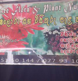 Vimandee Flora &  Plant Nursery