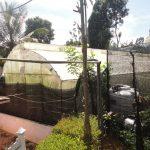 Green Rich Agro Farm