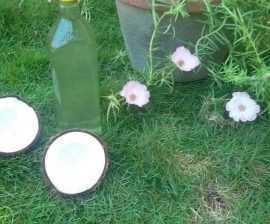 Soorya white coconut oil production