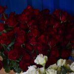 Asian Unique Roses