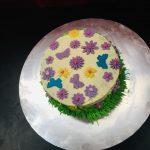 Cake Homes